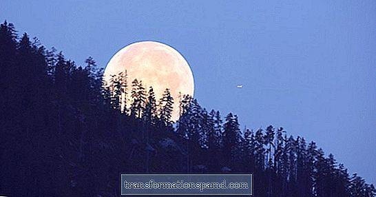 Tonight's Aries Supermoon Is A Supercharged Hunter's Moon, Too: Her er hva det betyr for deg